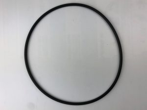 Series 2000/EcoPure Filter Lid O'ring